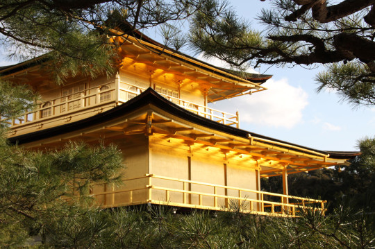 Golden Pavilion - Kyoto - Japan